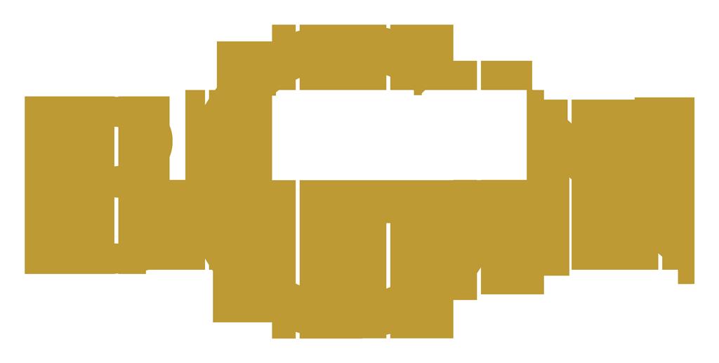 BGN logo wallpapers HD