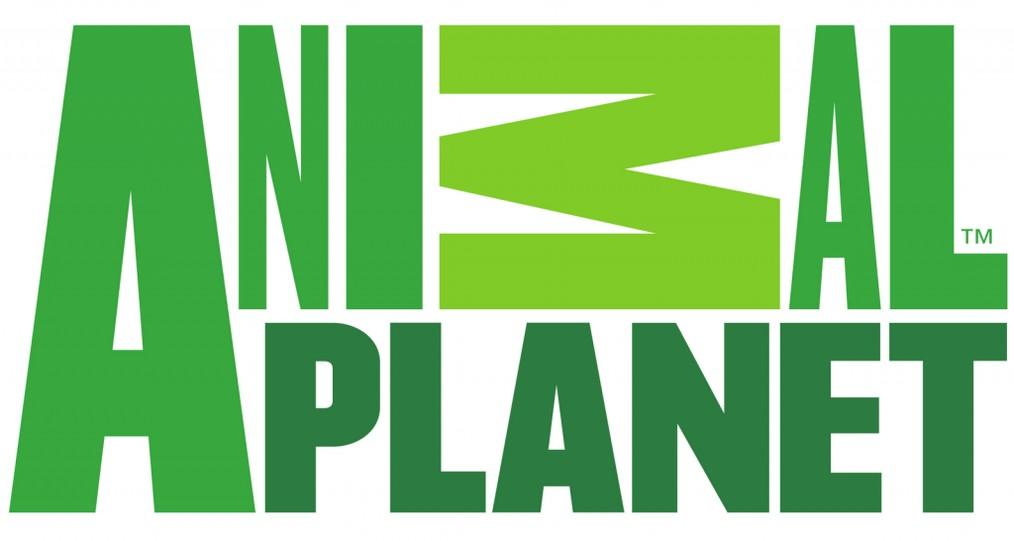 Animal Planet Logo wallpapers HD