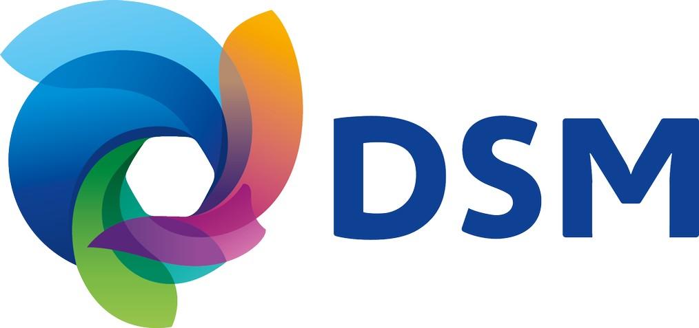 DSM Logo wallpapers HD